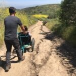 wheelchair trail riding